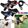 Pet Service Soft Dog Harness Vest+Leash Rope Adjustable Nylon Lead Collar Strap