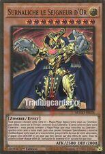 Yu-Gi-Oh!Surnaliche le Seigneur d'Or : PGR MAGO-FR024