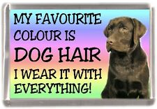 "Labrador (Chocolate) Fridge Magnet ""My Favourite Colour is Dog Hair"" - Starprint"