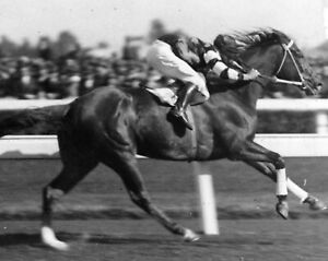 PHAR LAP 8X10 PHOTO HORSE RACING PICTURE JOCKEY