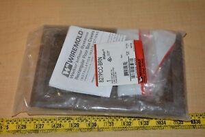 WIREMOLD 827PCC-BRN 2-Gang Non-Metallic Carpet Flush Flange, Brown