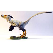Beasts of the Mesozoic Saurornitholestes sullivani