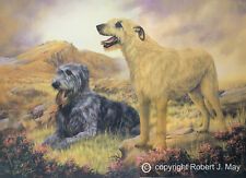More details for irish wolfhound limited edition print by robert j. may