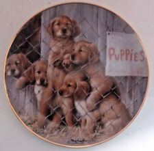 """A.S.P.C.A. Adopt A Puppy Limited Edition 8"""" Plate #F 1315 Five Puppies Pictured"""