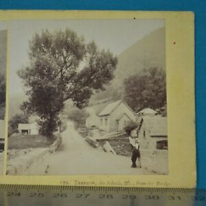 1860s Stereoview Photo Trefriw Schools Etc From Bridge Francis Bedford N Wales