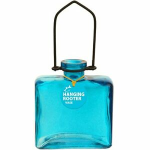 Couronne - Hanging Rectangle Rooter Vase - Aqua