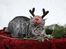 Reindeer cat hat Rudolf clothes Xmas hat for small dog Christmas pet costume