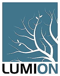 Lumion 9 Pro for Windows