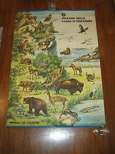 manifesto POSTER DIDATTICO,WWF,1975,Cassa di Risparmio ANIMALI DA SALVARE,POZZI