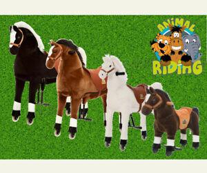 Reitpferd für Kinder, Reittier verschiedene Farben, Kinderpferd Animal Riding