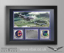 492d FS Patch set FRAME PRESENTATION, RAF Lakenheath.