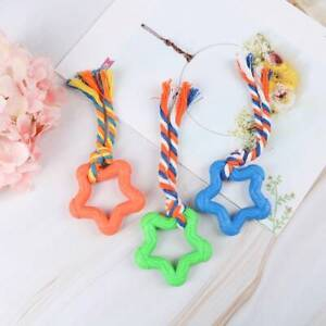 Pet Dog Interactive Toys Chew Play Training Pentagram Natural Rubber Durable.~
