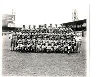 1949 BOSTON BRAVES 8X10 TEAM PHOTO  BASEBALL HOF MLB USA
