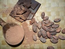 Poudre de cacao cru Bio de Madagascar - 225 g - variété : Trinitario/criollo