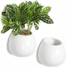 4 Inch Wall Mounted White Ceramic Plant Vase, Succulent Planter Pots, Set of 2