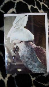 Papageien Doppel Klapp Karte mit Amazone & Umschlag groß Kopfweh