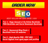 SEO Pyramid - 1000 PBN Backlinks and Social Signals from PR9