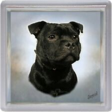 Staffordshire Bull Terrier Coaster No 7 by Starprint