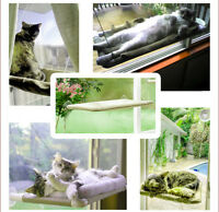 Cat Kitten Bed Perch Hanging Hammock Suction Cup Window Seat Fun Sunbath Resting