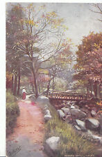 Yorkshire Postcard - Hebers Ghyll - Ilkley   A6645
