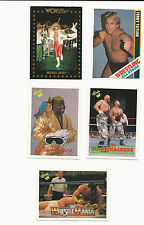 "Wrestling Trading Cards - Lot of 5: Taylor, Ware, Hayes, ""Bushwhackers"""