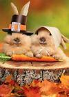 Avanti Press 2 Pilgrim Rabbits on Tree Stump Thanksgiving Card photo