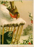 A Sunshine Card A Merry Christmas Unposted Postcard Vtg Reproduction of Antique