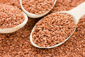 2lb/900g Devzira Red Plov Rice for Uzbek Pilaf Whole Grain Semi-Milled Девзира