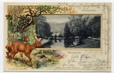 Wernigerode Christiane AK t Christianenthal ciervo de resina ejecutar 1903