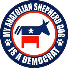 "Anatolian Shepherd Dog Is Democrat 5"" Political Sticker"