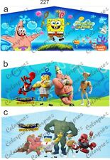 Sponge 13x13 or 15x15 Inflatable Jumper Banner Art Panel-no Bounce House 14oz