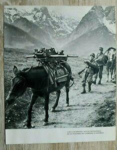 AB) Blatt 2.WK Gebirgsjäger Edelweiss 1941 Gebirgs-Division Geschütz Transport