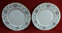 PRINCESS china SWEET BRIAR pattern Salad Dessert Plate - Set of Two (2) - 8-1/8""
