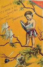 Victorian Scrap Card !882-84 Calendar Hoods Sarsaparilla Cherub Pug-Dog Doves *F