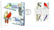 5317-20 Birds in Winter on one Panda Cachets, FDC