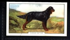 Gallaher Dogs 2nd Series 1938 - Gordon Setter No. 11