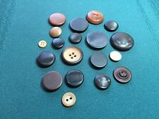 Vegetable Ivory Ladies Buttons in Several Colors & Designs-18 Total