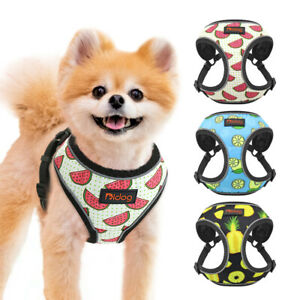 Breathable Mesh Dog Harness Reflective Cat Walking Vest Jacket for Small Dogs
