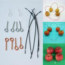 Fruit Power Generation Physical Experiment DIYTeaching Kit School Science 1 Set