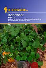 KIEPENKERL - Coriander 576 Once Blooming Coriander Seeds