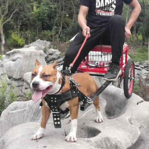 K9 PITBULL Dog Weight Pulling Harness Strong POLICE Training Adjustable Padded