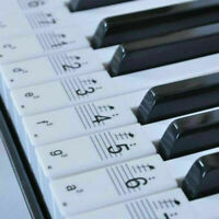 Music Keyboard Piano Stickers for Learn Play Study Beginner 88/61/54/49/31 Keys