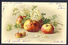 POSTKARTE Meissner & Buch Illustration Litho C. KLEIN Les POMMES FRÜCHTE FRUITS