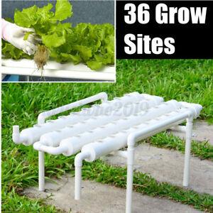Hydrokultur 36 Löcher Pflanze 4 Rohr Hydroponik Wachsen Bewässerung System Dekor