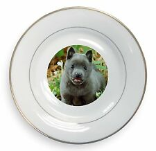 Blue Schipperke Dog Gold Rim Plate in Gift Box Christmas Present, AD-BS1PL