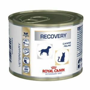 (12 x 195g) Royal Canin Veterinary Diet Dog & Cat Wet Food– Recovery