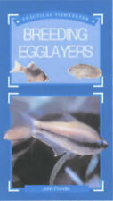 PFK Guide to Breeding Egglayers John Rundle hardback Brand New with Free UK Post