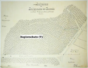 Technische Handzeichnung Zeisigwald bei Chemnitz Flurkarte Zeichnung 1900er Deko