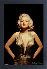 MARILYN MONROE GOLD 13x19 FRAMED GELCOAT POSTER ICONIC MODEL BEAUTY NEW PRETTY!!