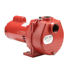 Red Lion 2 Horsepower 80 GPM Cast Iron Lawn Irrigation Sprinkler Pump | RLSP-200